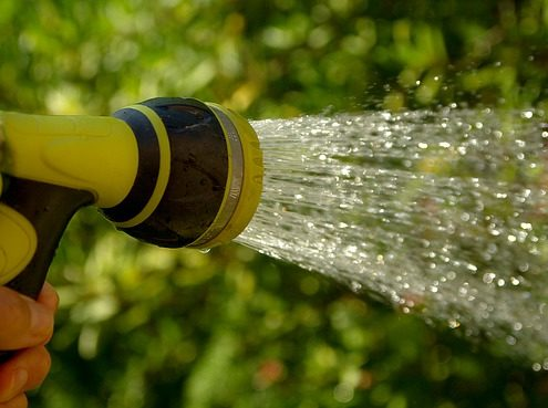 Vil rense gartnerivann